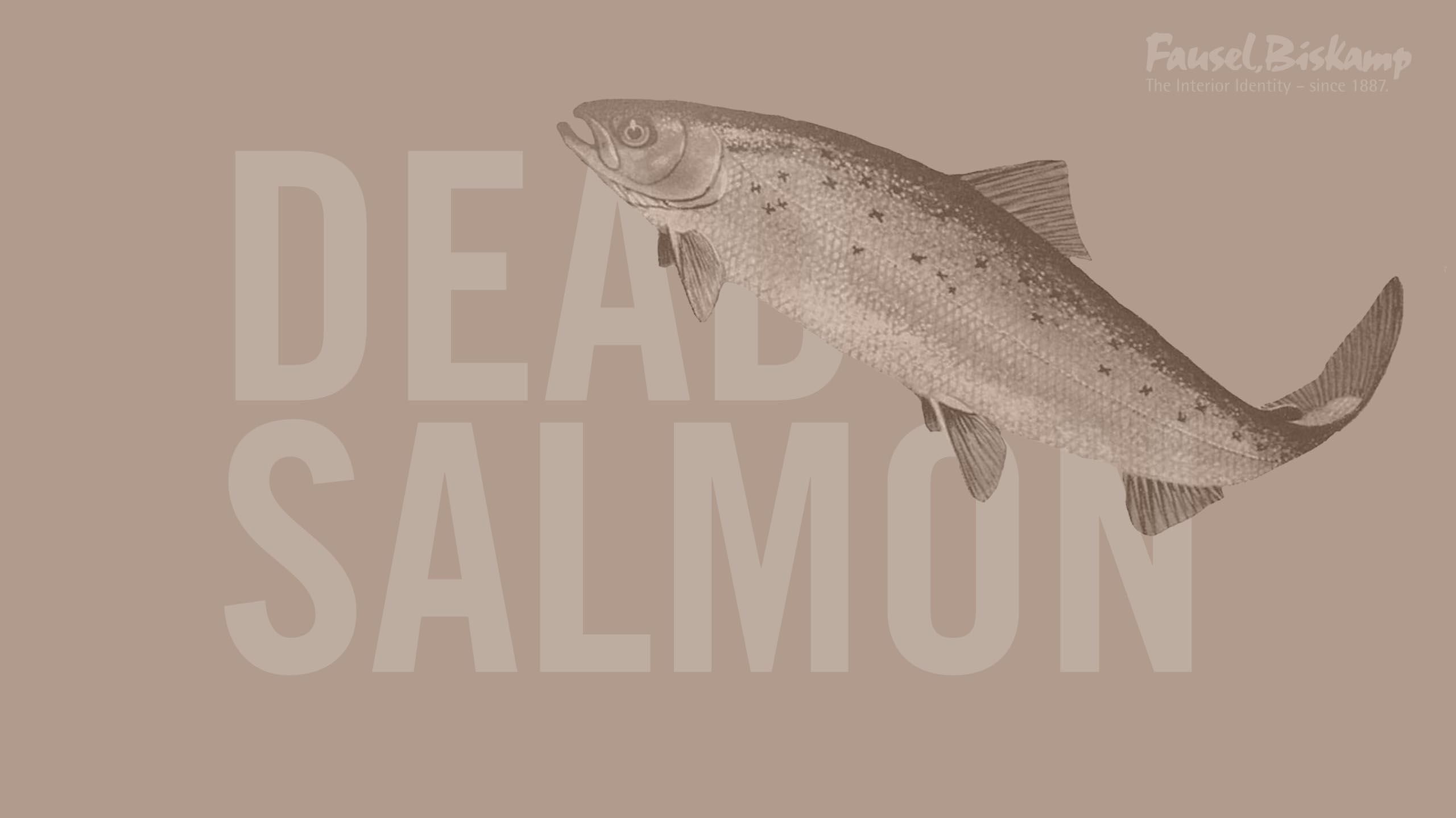 Dead Salmon (No. 28)