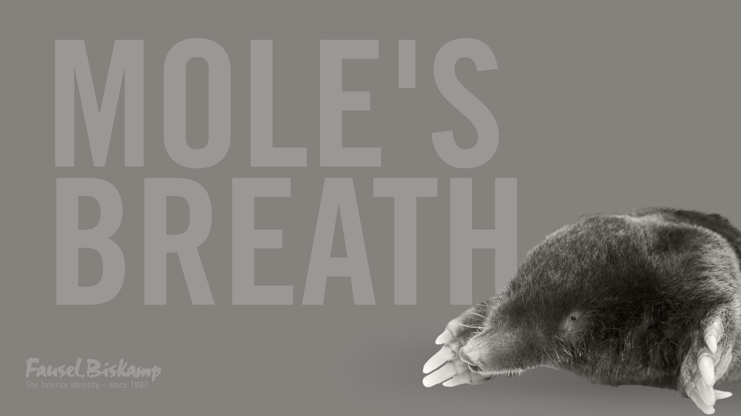 Mole's Breath (No. 276)
