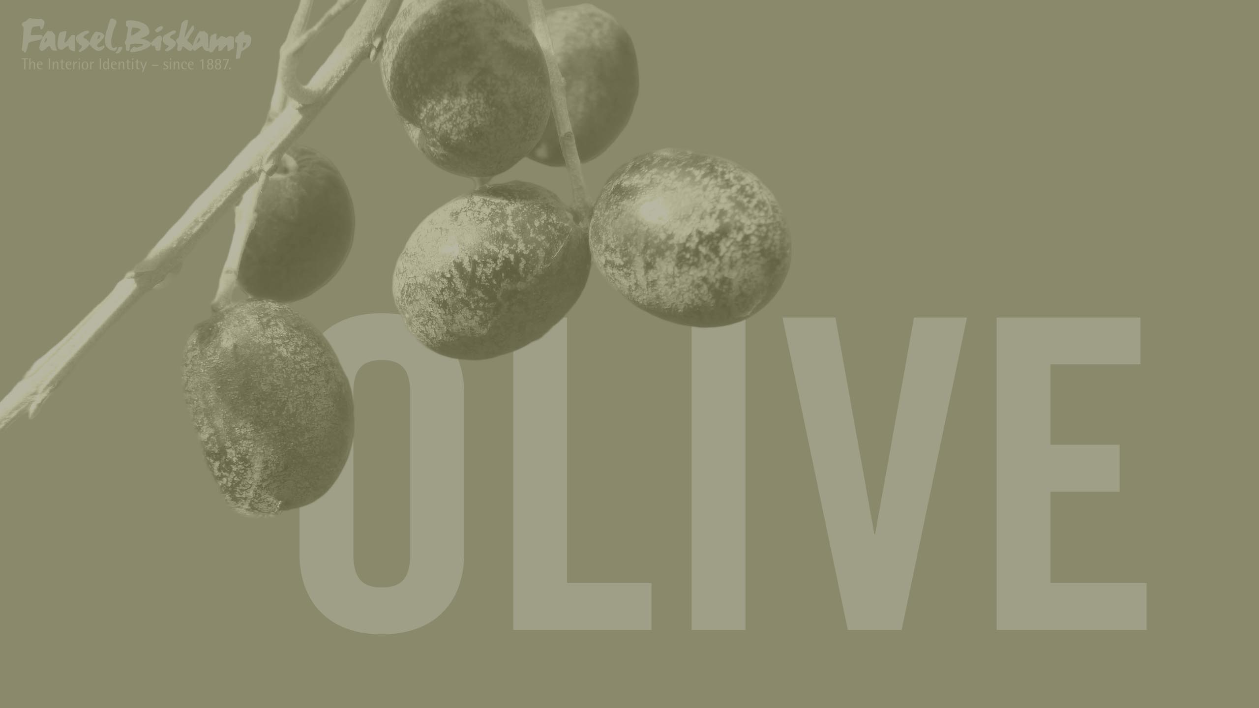 Olive (No. 13)